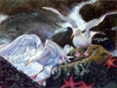 Seagulls Taking Flight